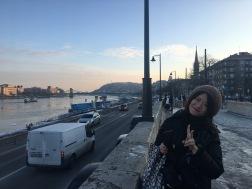 Jan. 2017 Budapest
